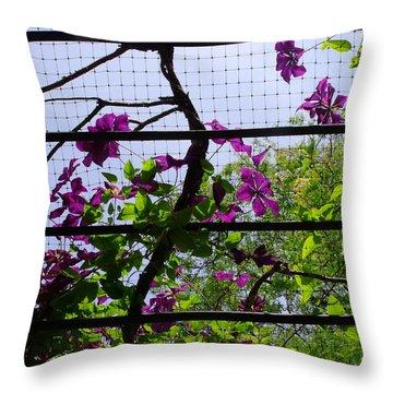 Clematis I Throw Pillow by Anna Villarreal Garbis