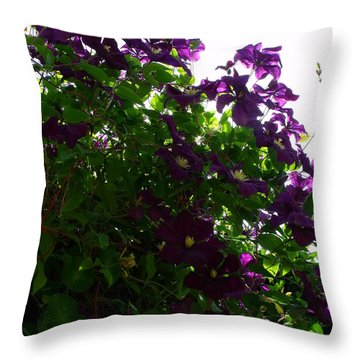 Clematis IIi Throw Pillow by Anna Villarreal Garbis