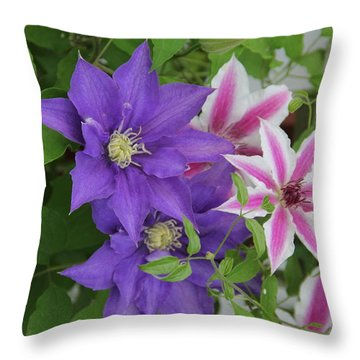 Clematis Purple And Pink White Throw Pillow