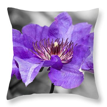 Clematis Throw Pillow by Scott Carruthers