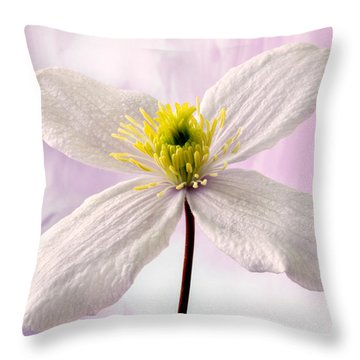 Clematis Throw Pillow by Terence Davis