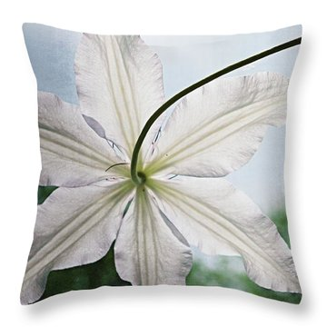 Throw Pillow featuring the photograph Clematis Vine And Leaves by Michelle Calkins