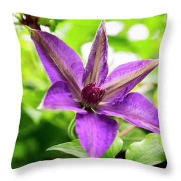 Clematis Vine II Throw Pillow