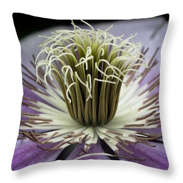 Throw Pillow featuring the photograph Clematis World by Michael Friedman