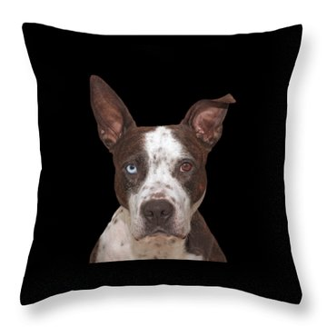 Cleo  Throw Pillow by Brian Cross