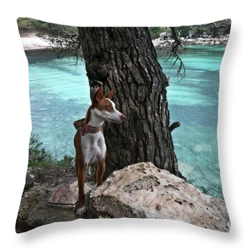 Cleopatra In A Turquoise Paradise Throw Pillow by Pedro Cardona Llambias