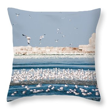 Cleveland Lighthouse In Ice  Throw Pillow
