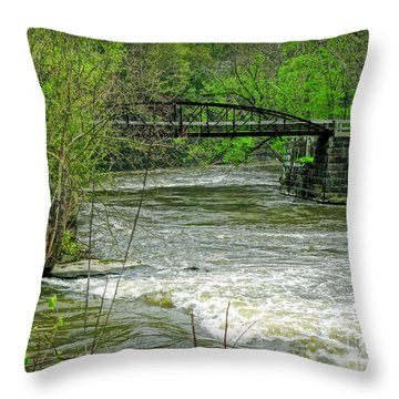 Cleveland Metropark Bridge Throw Pillow by Joan  Minchak
