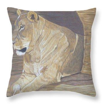 Cliff Dweller Throw Pillow