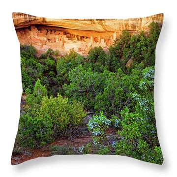 Cliff Palace At Mesa Verde National Park - Colorado Throw Pillow by Jason Politte
