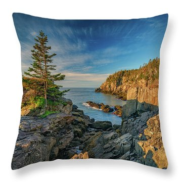 Throw Pillow featuring the photograph Cliffs Of Quoddy Head State Park by Rick Berk