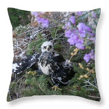 Cliffside Nest Throw Pillow