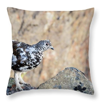 Cliffside Ptarmigan Throw Pillow