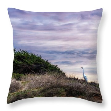 Cliffside Watcher Throw Pillow