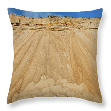 Cliffward Throw Pillow by Susan Cole Kelly