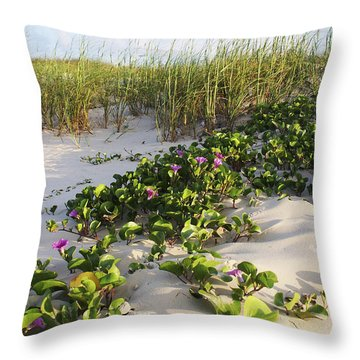 Climbing The Dunes Throw Pillow
