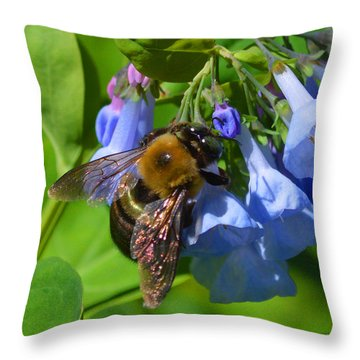 Cling On Throw Pillow