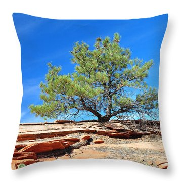 Clinging Tree In Zion National Park Throw Pillow by Bruce Gourley