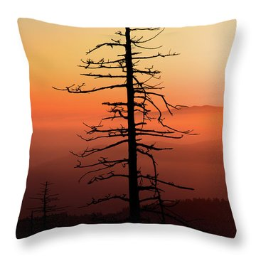 Throw Pillow featuring the photograph Clingman's Dome Sunrise by Douglas Stucky