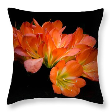 Clivia Flora Throw Pillow by Bruce Pritchett