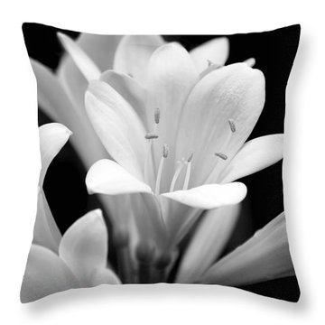 Clivia Flowers Black And White Throw Pillow