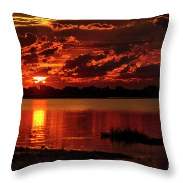 Throw Pillow featuring the photograph Cloaked In Red by DJA Images