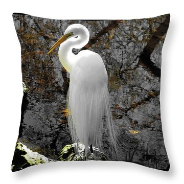Cloaked Throw Pillow by Judy Wanamaker