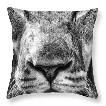 Close And Personal Throw Pillow