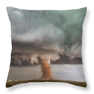 Close Call Throw Pillow