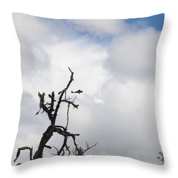 Throw Pillow featuring the photograph Close Call by Marie Neder