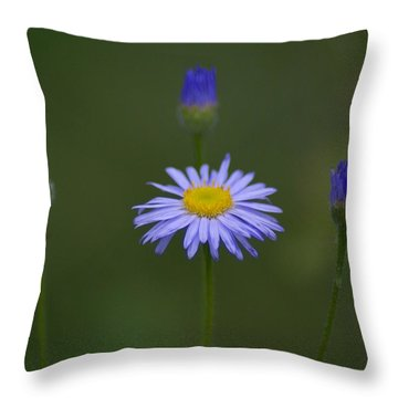 Throw Pillow featuring the photograph Close Friends by Ben Upham III