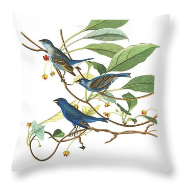 Throw Pillow featuring the photograph Close Friends by Munir Alawi