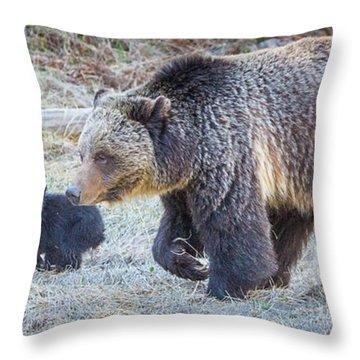 Close Quarters  Throw Pillow