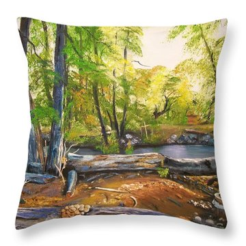Throw Pillow featuring the painting Close To God's Nature by Sharon Duguay
