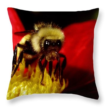 Close Up Bee Throw Pillow