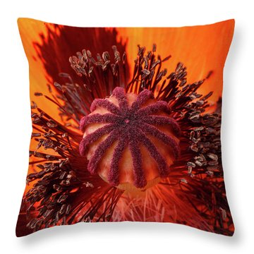 Close-up Bud Of A Red Poppy Flower Throw Pillow