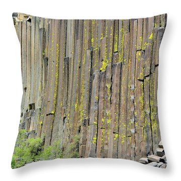 Close-up Devils Postpile Throw Pillow