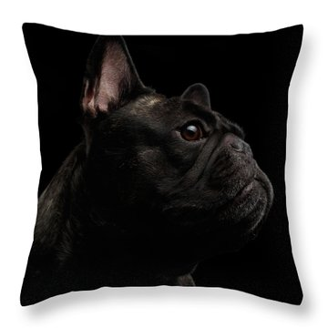 Throw Pillow featuring the photograph Close-up French Bulldog Dog Like Monster In Profile View Isolated by Sergey Taran