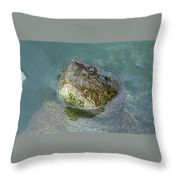 Throw Pillow featuring the photograph Close Up Of A Snapping Turtle by Sally Sperry