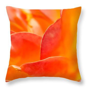 Close-up Of An Orange Rose Flower Throw Pillow by David Perry Lawrence