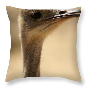 Close Up Of An Ostrich Throw Pillow