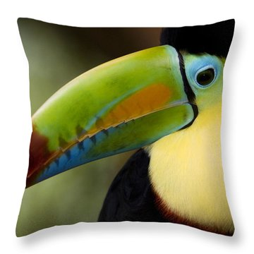 Close-up Of Keel-billed Toucan Throw Pillow