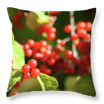 Close Up Of Red Berries Throw Pillow by Michele Wilson
