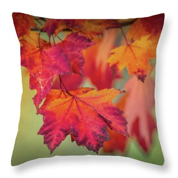 Close-up Of Red Maple Leaves In Autumn Throw Pillow