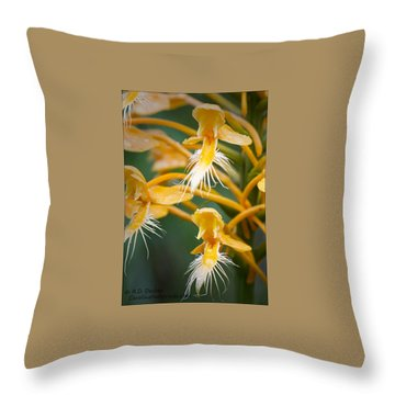 Close-up Of Yellow Fringed Orchid Throw Pillow by Bob Decker