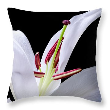 Close-up Photograph Of A White Oriental  Lily Throw Pillow by David Perry Lawrence