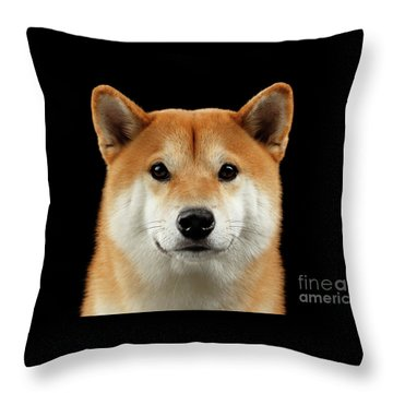 Close-up Portrait Of Head Shiba Inu Dog, Isolated Black Background Throw Pillow