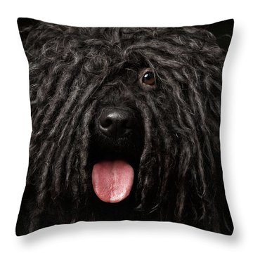 Close Up Portrait Of Puli Dog Isolated On Black Throw Pillow