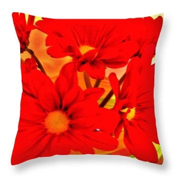 Close Up Red Gerbers Throw Pillow by Marsha Heiken