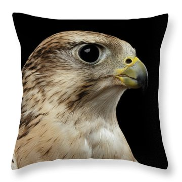 Close-up Saker Falcon, Falco Cherrug, Isolated On Black Background Throw Pillow